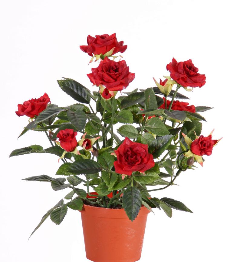 Flores y plantas artificiales mayorista top art int for Imagenes de plantas en macetas